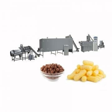 Industrial Commercial Vacuum Fish Machinery Potato Chip Falafel Deep Fryer Machine Equipment for Sale